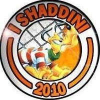 Shaddino